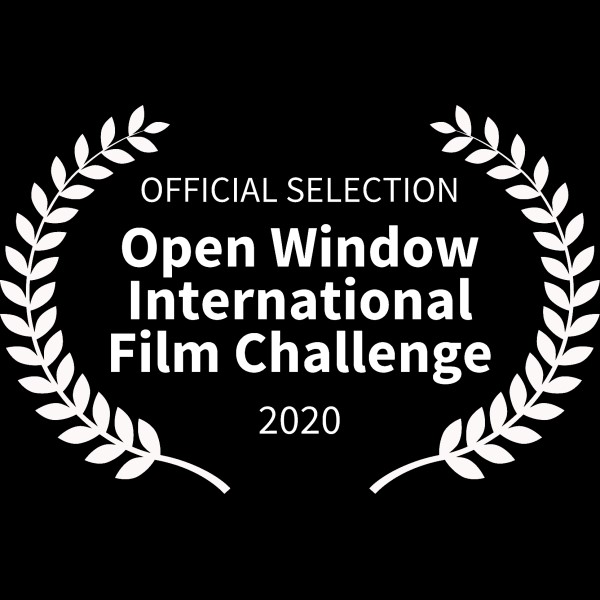 Open Window International